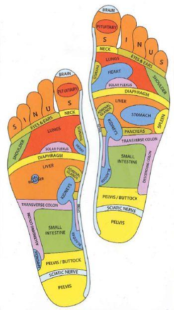 reflexolog feet chart